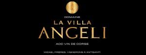 Logo Villa Angeli_Light (2)